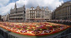 Brussels_floral_carpet_C