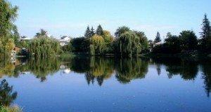 lacul-Miresei-din-Campina