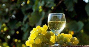 vin-alb-550x300
