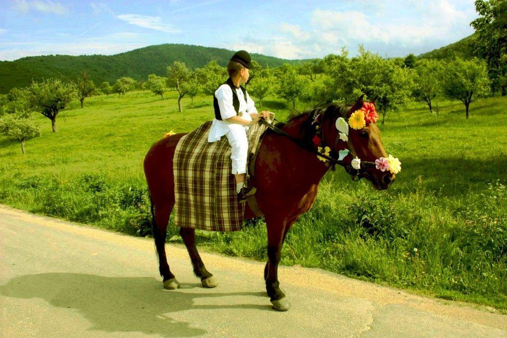 Marginimea-Sibiului