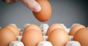 eggs-oua
