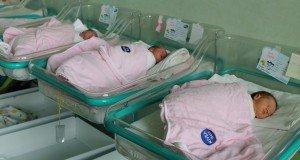 bebelusi new born