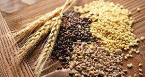 grain output