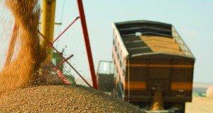 tons of grain
