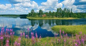 Finland National Day: Did you know that….